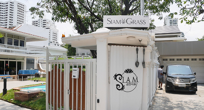 siamgrass_01